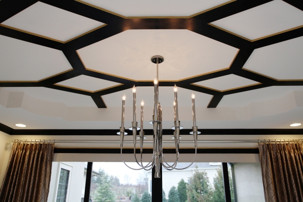Lisa Stewart Design Interior Raleigh Ceiling 1