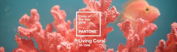 Lisa Stewart Design Interior Raleigh Pantone 2019